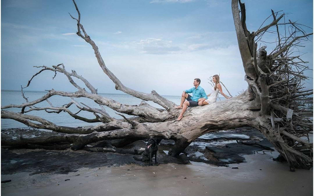 lee family driftwood beach session \\ jacksonville family photographer