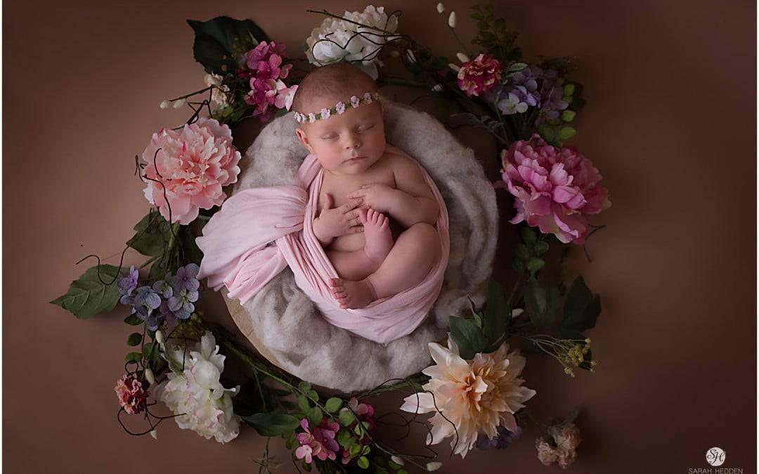 JAX Newborn Photographer: Baby Luciana