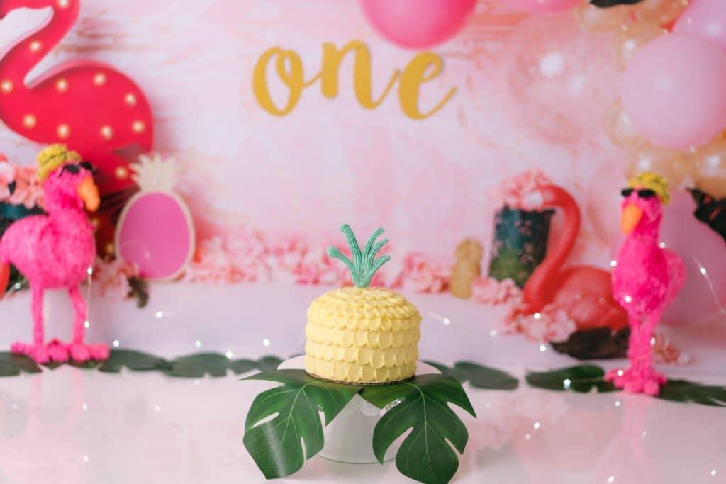Flamingo/pineapple